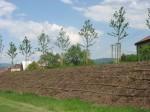 Desatero úspěšné výsadby v obcích